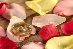 Wedding rings on rose petals Stock Photo