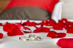 Wedding rings among rose petals on bed Stock Image