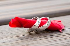 Wedding rings on a rose. Wedding rings on a red petal of a rose Royalty Free Stock Photos