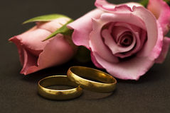 Wedding rings and roses. Stock Images