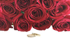 Wedding rings and roses. Royalty Free Stock Images