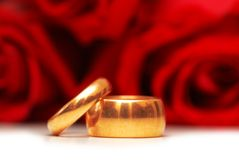 Wedding rings and roses Stock Image