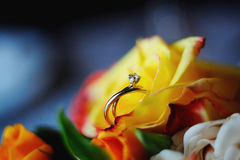 Wedding rings in a roses. Wedding rings in roses, macro Royalty Free Stock Photos