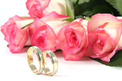 Wedding rings and roses. On white background Royalty Free Stock Photography
