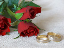 Wedding rings and roses. Red roses and wedding rings on a piece of cloth royalty free stock image