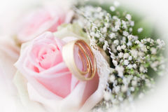 Wedding rings and roses. Marriage, pink roses, gold rings, detail Stock Photography