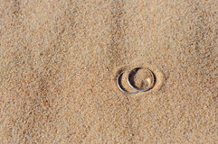 Wedding rings on sand. Engagement silver rings on sand Royalty Free Stock Images