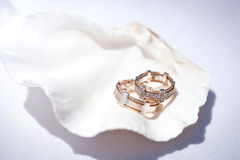 Wedding rings in seashell Royalty Free Stock Photography