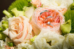 Wedding rings. The set of wedding rings. close up Royalty Free Stock Images