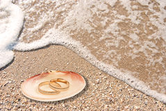 Wedding rings in a shell. On sea coast royalty free stock photos