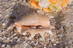 Wedding rings in a shell on the beach Stock Photo