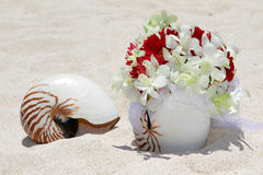 Wedding rings on a shell on beach Stock Image