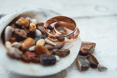 Wedding rings in the shell full of sea pebbles on a white background Royalty Free Stock Image