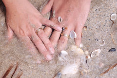 Wedding rings with shells. Two hands in water wearing gold wedding rings with shells and sand Royalty Free Stock Images