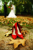 Wedding Rings and shoes Stock Images