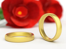 Wedding Rings Shows Find Love And Adoration Royalty Free Stock Photos