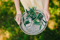 Wedding rings on a silver tray with olive branches in their hand Royalty Free Stock Image