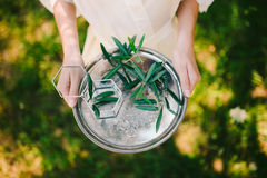 Wedding rings on a silver tray with olive branches in their hand Royalty Free Stock Photography
