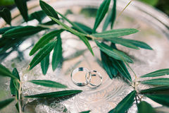 Wedding rings on a silver tray with olive branches. Wedding jewe Stock Photo