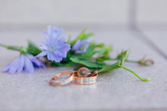 Wedding rings with snail on the leaves Stock Photo