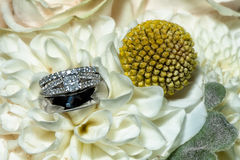 Wedding Rings. Sparkly wedding rings against a mirror with gold sparkle Royalty Free Stock Photo