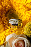 Wedding Rings. Sparkly wedding rings amongst the bridal bouquet flowers Stock Photos