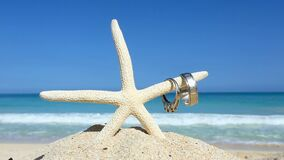 Love travel concept Wedding rings and starfish on tropical beach Oahu Hawaii