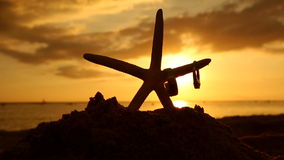Wedding rings and starfish on beach at sunset love concept stock video