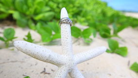 Wedding rings and startfish beach love concept. Wedding rings on the starfish. beach love concept. Closeup of two bands for casual marriage celebration Oahu stock video footage