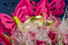 Wedding rings. Surrounded by butterflies and flowers Stock Images
