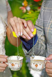 Wedding rings. On the tea bsg's thread Royalty Free Stock Photo