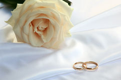 Wedding rings and a tea rose Royalty Free Stock Photography