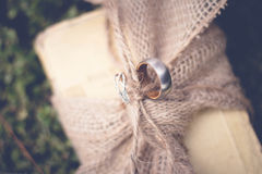 Wedding Rings. Tied to an antique bible Royalty Free Stock Photo