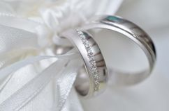 Wedding rings. Tied with white ribbon Stock Images