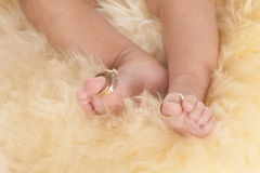 Wedding rings toes. A beautiful baby feet with their parents wedding rings on their toes Royalty Free Stock Photography