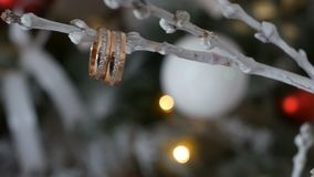 Wedding rings on a tree branch. Gold wedding rings with gems on a tree branch stock video footage