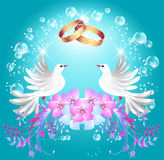 Wedding rings and two doves. Card with wedding rings and two doves in ornament frame vector illustration