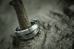 Wedding rings. Two rings,wedding rings Love concept Royalty Free Stock Photos