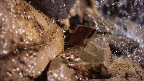 Wedding rings under the watterfall stock video footage
