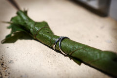 Wedding rings on a vine leaf Stock Images