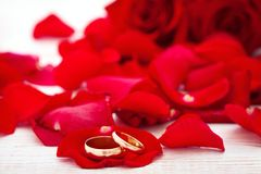 Wedding rings and wedding bouquet of red roses petals. Stock Photo
