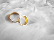 Wedding rings on white background. Two golden wedding rings on white cloth background Stock Photos