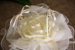Wedding rings on white beautiful cushion in the form of a rose. Closeup royalty free stock photo