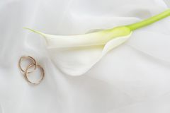 Wedding rings and white flower on white royalty free stock photo