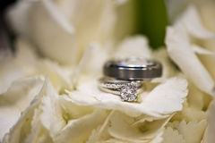 Wedding rings in white flowers Stock Photo