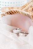 Wedding rings in white gold Royalty Free Stock Photos