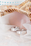 Wedding rings in white gold Royalty Free Stock Image