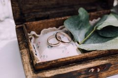 Wedding rings from white gold in a wooden box filled with moss,. Greenery and grass. Details and decor of rustic ceremony Stock Image