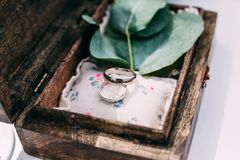 Wedding rings from white gold in a wooden box filled with moss,. Greenery and grass. Details and decor of rustic ceremony Royalty Free Stock Image