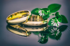 Wedding rings. With white little flowers Stock Images